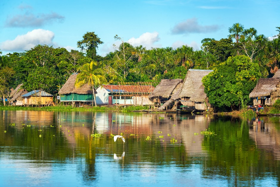 An image of a village in the rainforest