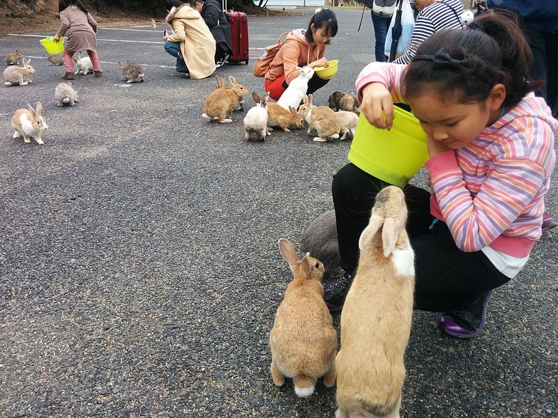 Children feeding the rabbits at Okunoshima Island. Image credit: Jdlrobson Creative Commons BY-SA 4.0
