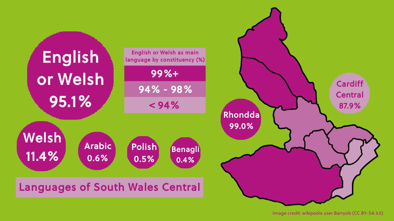 Languages spoken in Cardiff visual