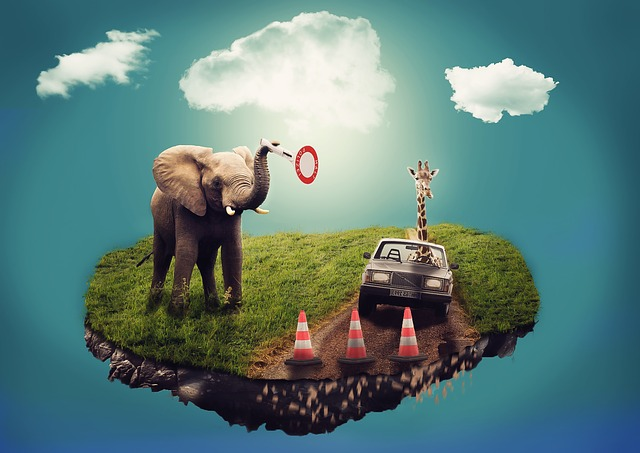 Elephant and car in a dream scene